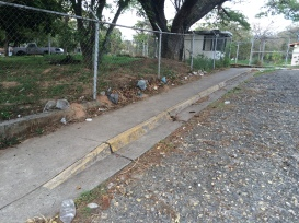 Sidewalk with access ramp. No handrails available. See steep slope.